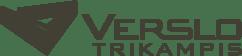 Verslo Trikampis logotipas